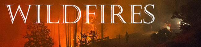 Wildfires-Header-jpg