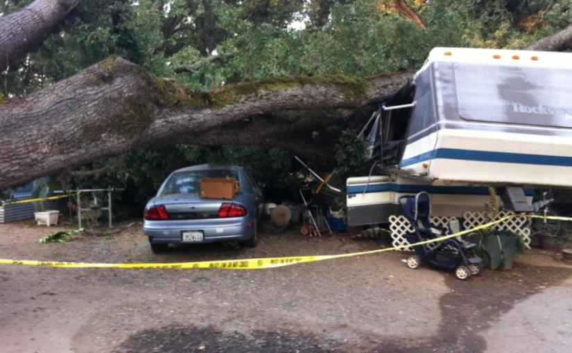 Tree Demolishes Rocklin Home